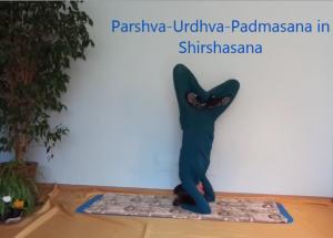 Parshva-Urdhva-Padmasana_Alina Kumaris
