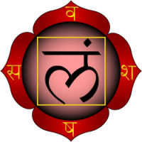 Muladhara-chakra_en.wikipedia.org