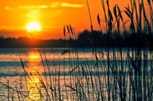 Sonne-Bild von Tomasz Marciniak auf pixabay